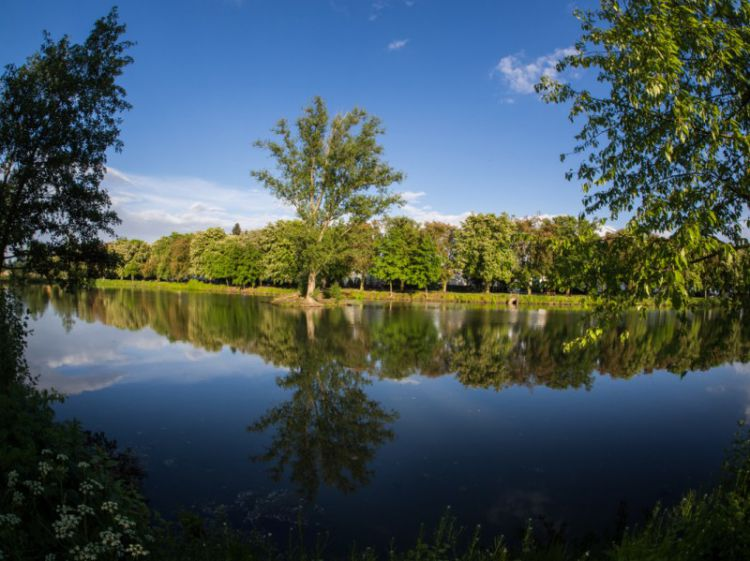 Stadtpark Wieseckaue