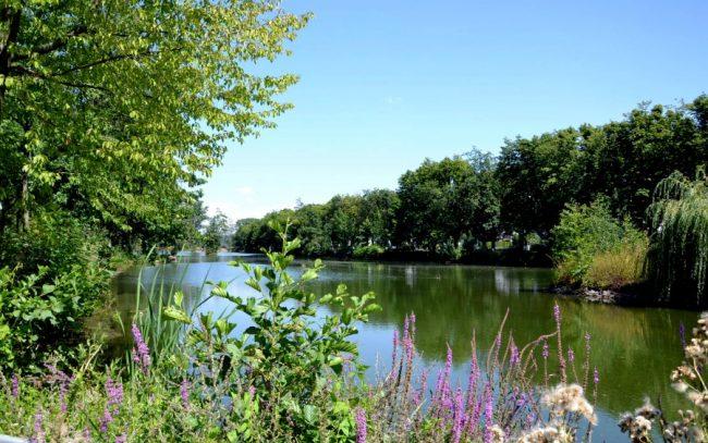 Freizeitgelände Stadtpark Wieseckaue